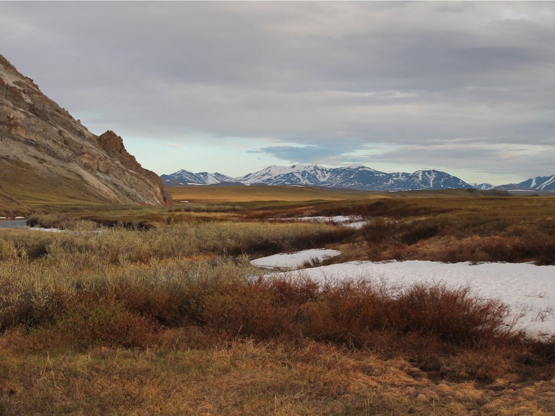 New Publication  Understanding Methane Emissions In Arctic Wetlands